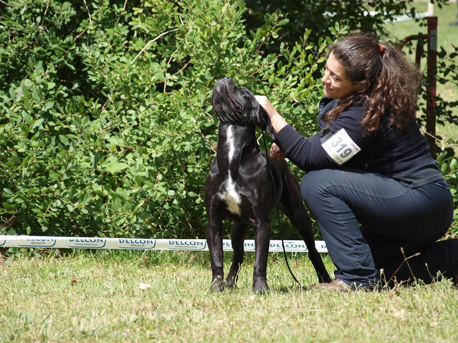 Photos Chalette 45 P7246202-2b38906