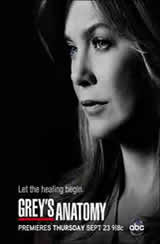 Greys Anatomy 9x07 Sub Español Online