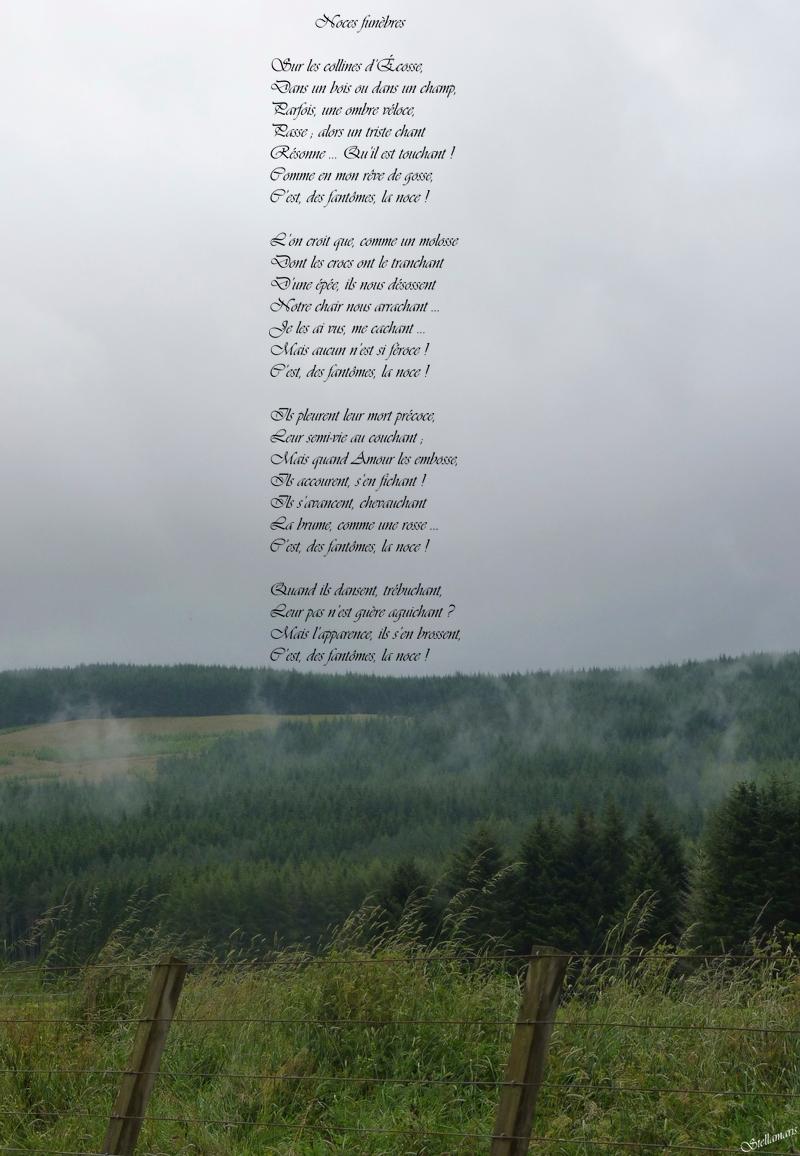 Noces funèbres / / Sur les collines d'Écosse, / Dans un bois ou dans un champ, / Parfois, une ombre véloce, / Passe ; alors un triste chant / Résonne … Qu'il est touchant ! / Comme en mon rêve de gosse, / C'est, des fantômes, la noce ! / / L'on croit que, comme un molosse / Dont les crocs ont le tranchant / D'une épée, ils nous désossent / Notre chair nous arrachant … / Je les ai vus, me cachant … / Mais aucun n'est si féroce ! / C'est, des fantômes, la noce ! / / Ils pleurent leur mort précoce, / Leur semi-vie au couchant ; / Mais quand Amour les embosse, / Ils accourent, s'en fichant ! / Ils s'avancent, chevauchant / La brume, comme une rosse … / C'est, des fantômes, la noce ! / / Quand ils dansent, trébuchant, / Leur pas n'est guère aguichant ? / Mais l'apparence, ils s'en brossent, / C'est, des fantômes, la noce ! / / Stellamaris