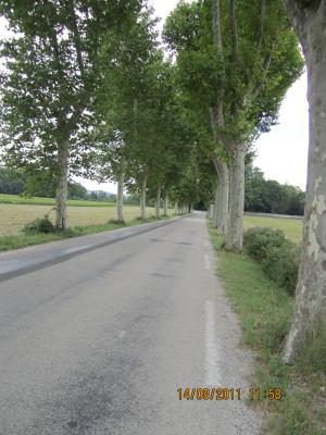 2ème RPCS - 14 août 2011 - DIE (Drôme) Rpcs-2---1158---d...-blacons-2bd4baf