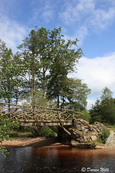 Ballade dans les Hautes fagnes et les sous-bois le 10-08-2011 Img_2619-800x600--2bbd5af